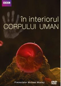 in-interiorul-corpului-uman-inside-the-human-body