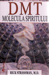 dmt-molecula-spiritului