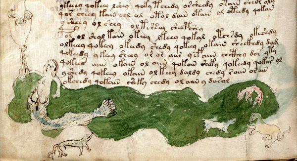 voynich-manuscript-page-143-detail